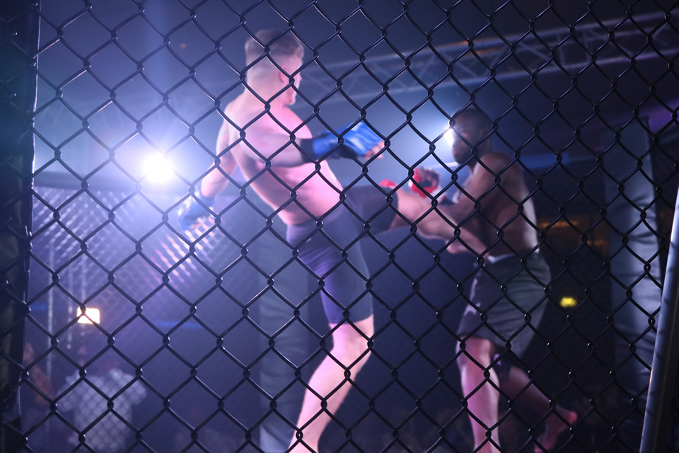 MMA Fight Night - May 2017